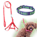 Pet Leash & Collar
